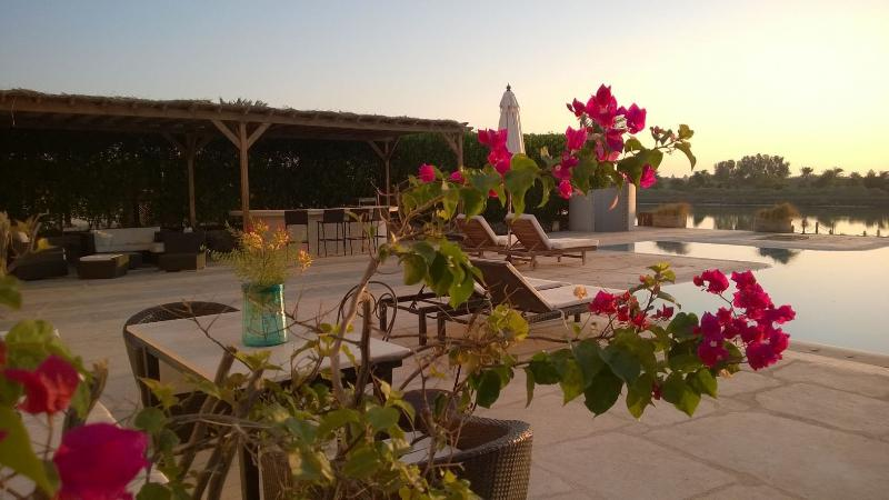 Villa JoZeina,  4 bedrooms with large pool, El Gouna, Ferienwohnung in El Gouna