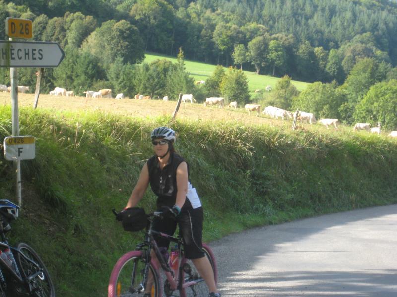 El área de ciclismo