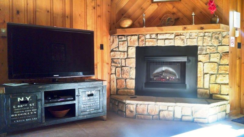 Fireplace and 50 inch LCD TV in living room / entrance area