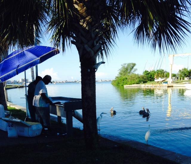 Fishermen in Marina Area