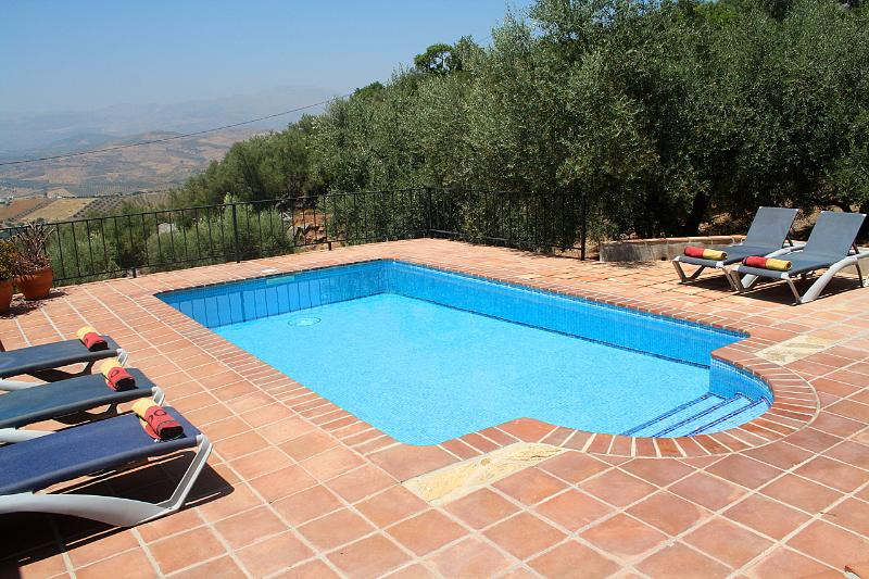 The inviting swimming pool