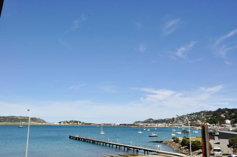View towards Evans Bay Marina from the deck