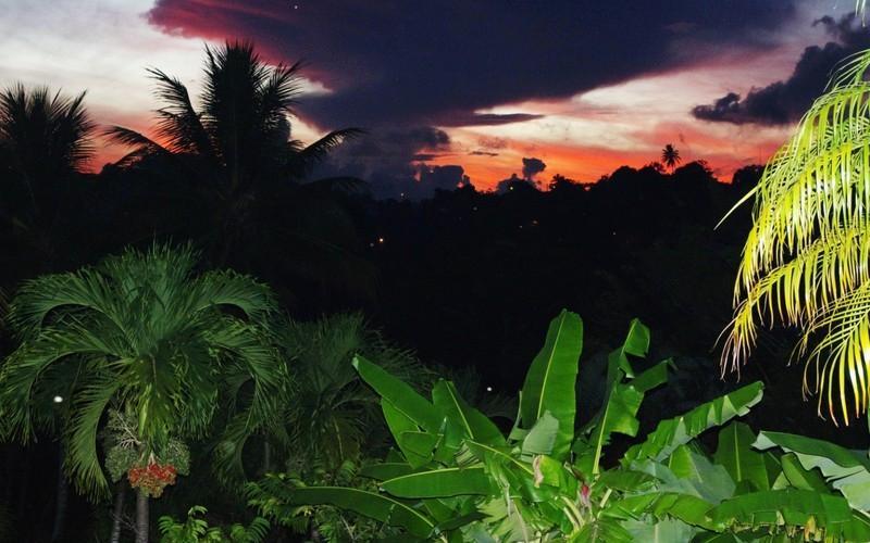 vue de nuit du bungalow