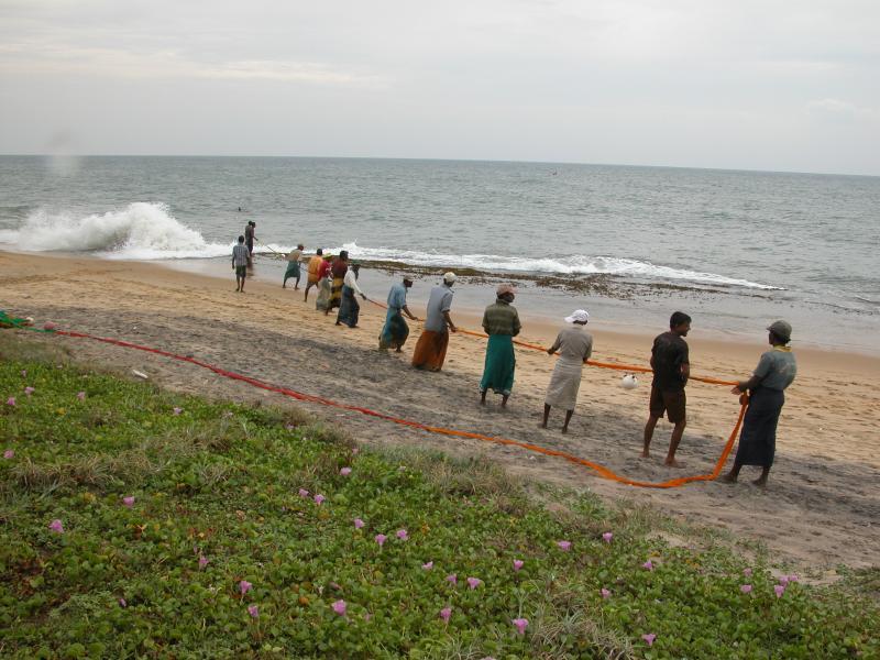 Los pescadores que tiran en sus capturas (en frente de samyama) al mediodía