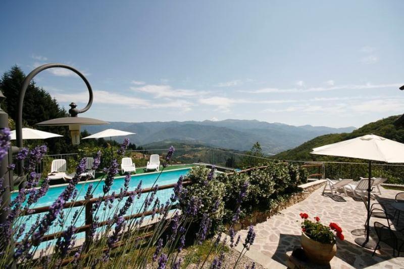Metato, romantic, stunning views, pool*, holiday rental in Vergemoli