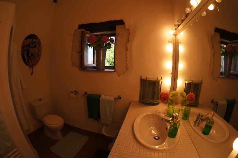 Bathroom bath, shower, bidet and wc