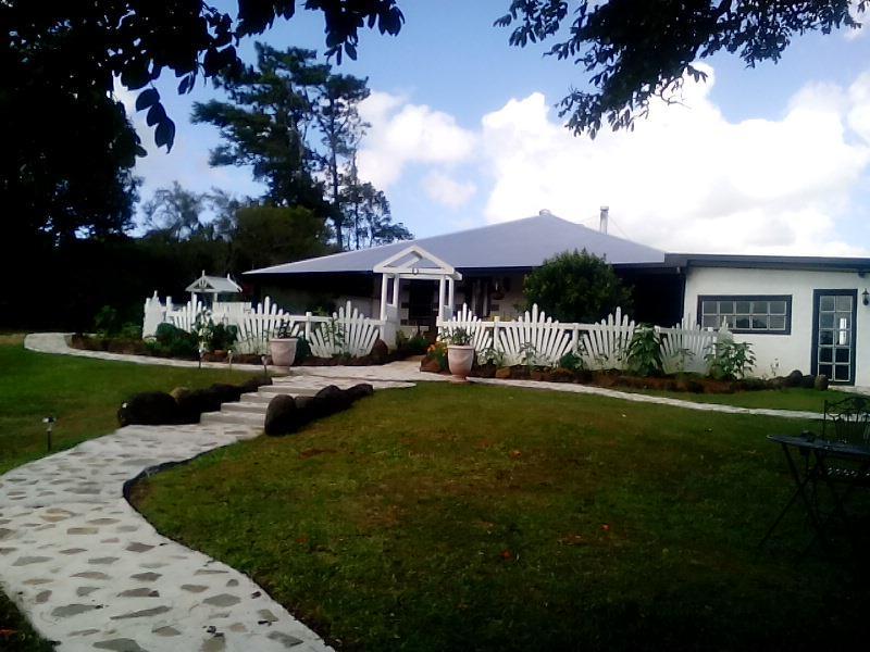 Wagtail House Circa 1920
