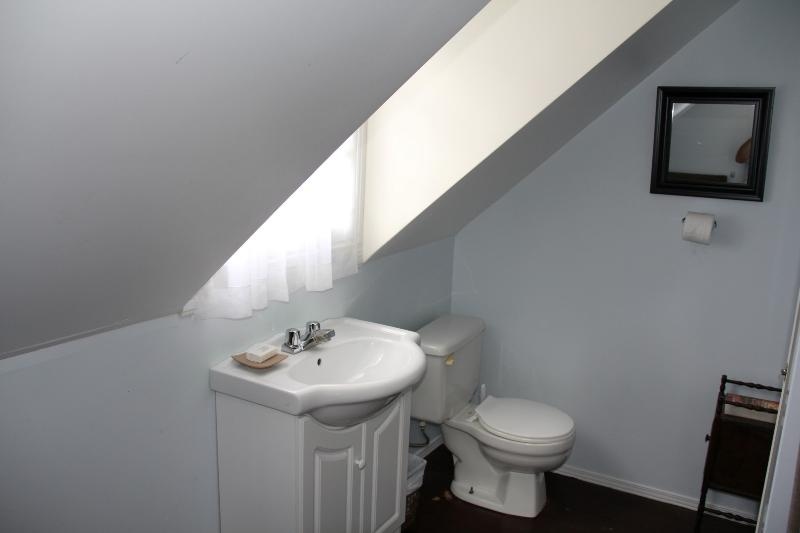 Ice Palace: Bathroom (has stand-up shower)