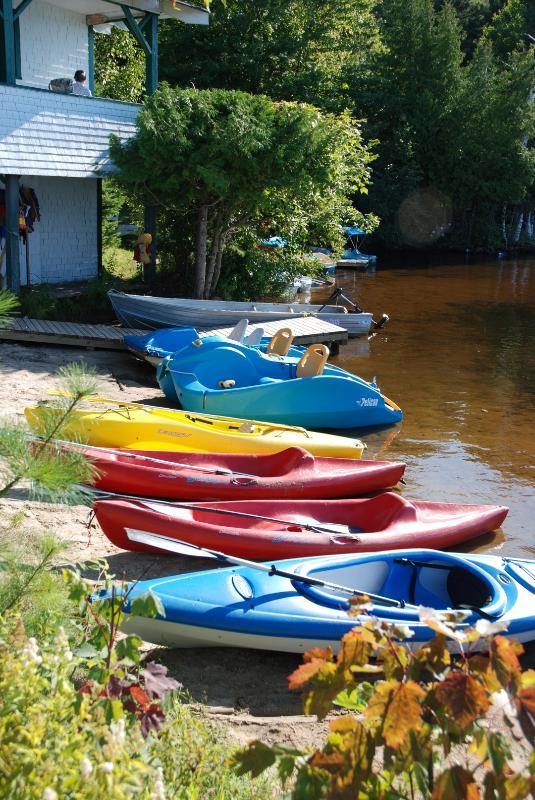 Clyffe House: Kajaker, kanoter, trampbåtar och elfiske stakbåtar