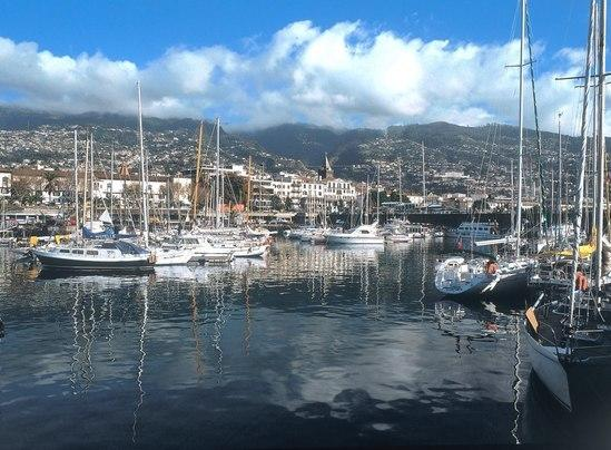 Surrounding areas - Funchal Port
