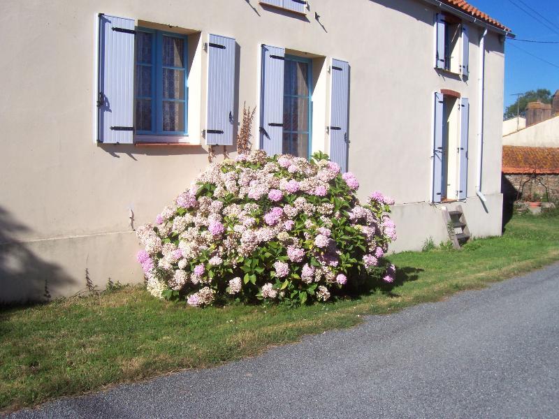 Coté Sud Amandiers