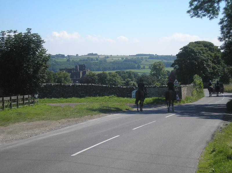 Racehorses returning from the gallops