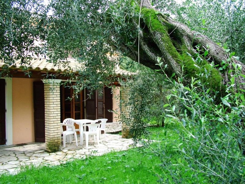 Corfu maisonette villa olive near the beach and near the center of Ipsos, vacation rental in Pyrgi