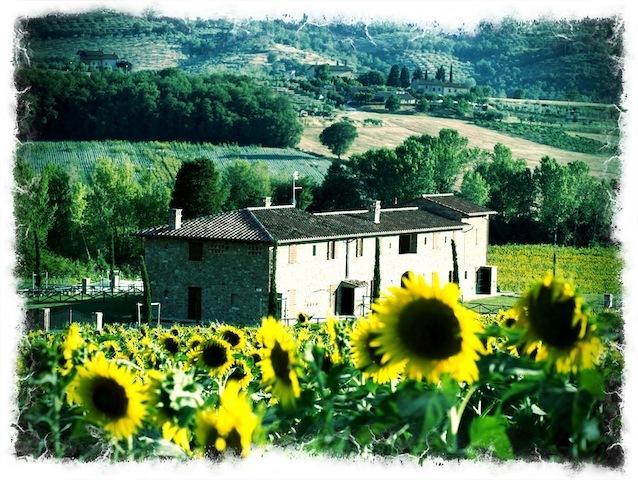 Ornellaia luxury home with pool - a Fontanaro Property, Ferienwohnung in Perugia