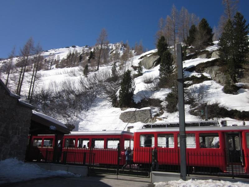 Train to the Mer de Glace