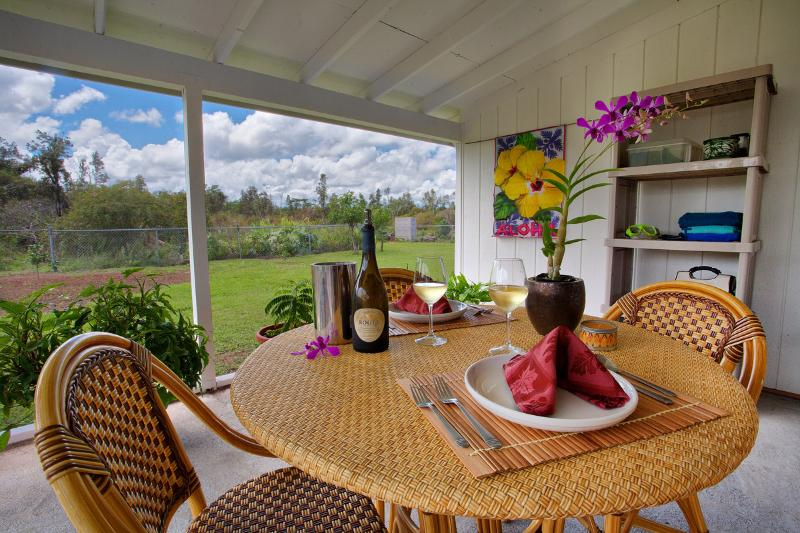 Screened-in patio with view of backyard; includes grill and fridge.
