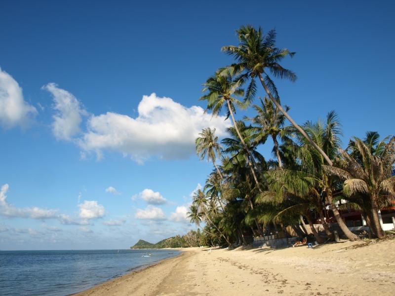 A praia real localizado apenas a 20 segundo a pé da casa.