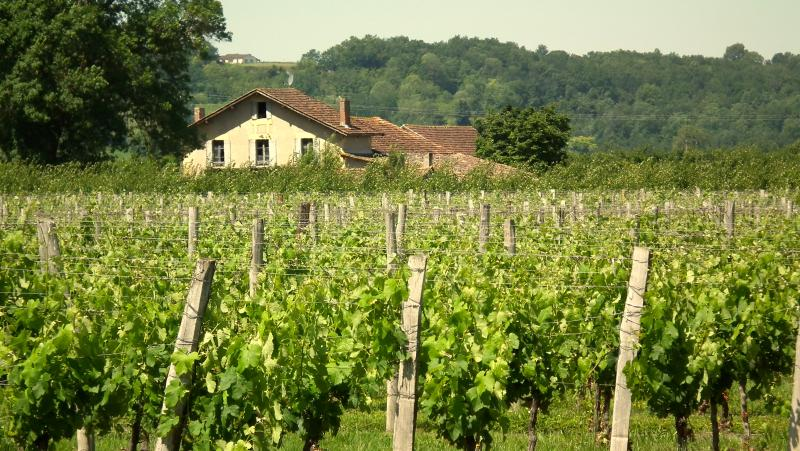 Your luxury home at Les Marais amidst the vines and orchards.