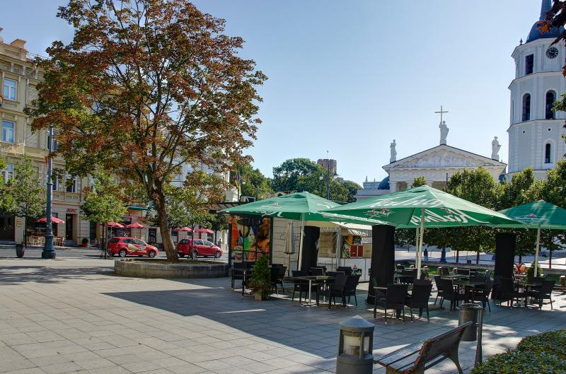 Odminiu Square with the best view in Vilnius to Cathedra