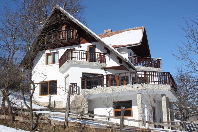 Waltraud House, vacation rental in Rucar