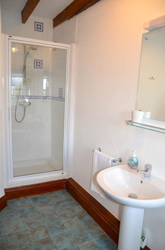Shower enclosed, large basin, mirror with shaver point and toilet