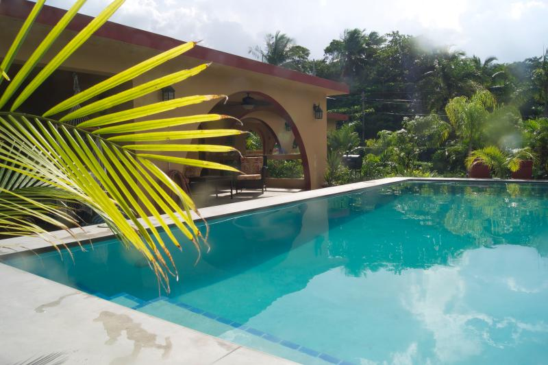 A View Across The Pool To The Cabana