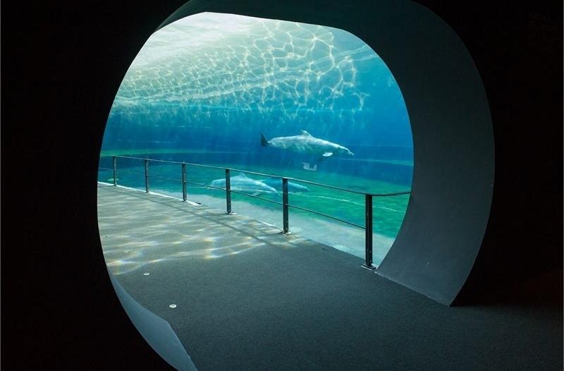 West, 300m: Expo area and the Aquarium