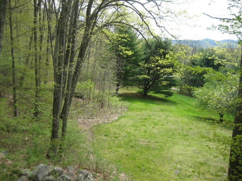 Big beautiful lawn (2 acres!)