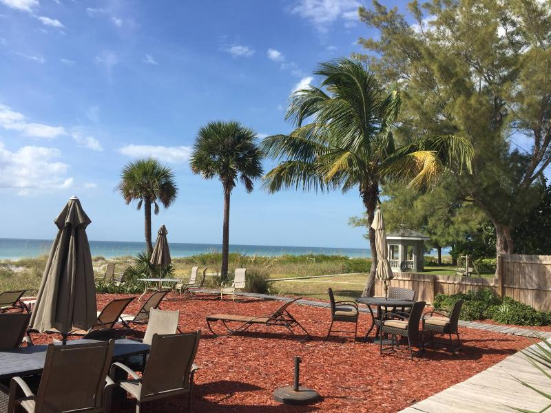 view looking right from the beachfront yard