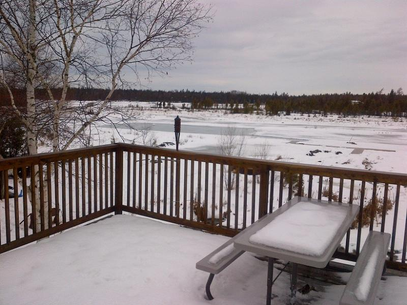 Winter - Ice Rink Made