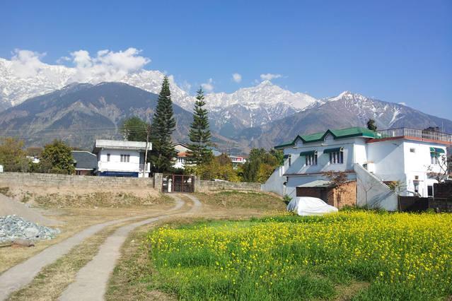 Dharamsala Paradise, alquiler vacacional en Pragpur