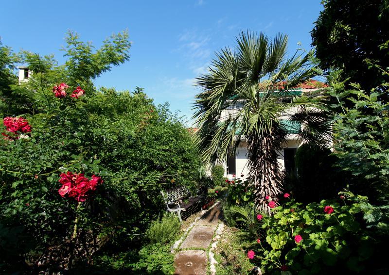 Palm Tree Apartment, alquiler de vacaciones en Sudurad