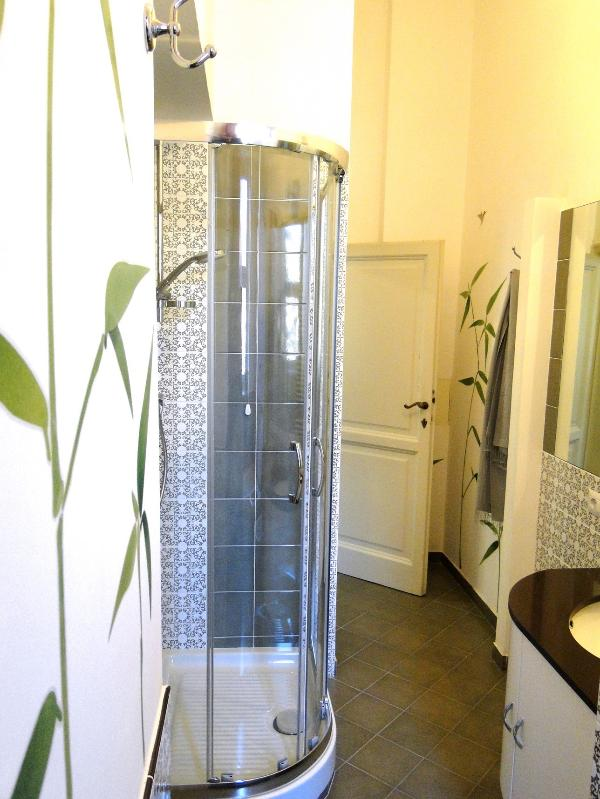 The shower cabine in the bathroom