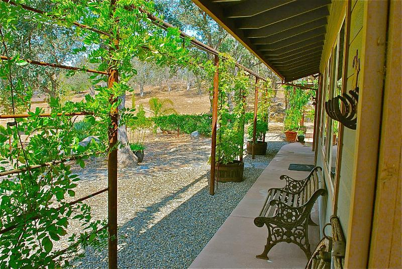 Cottage Porch Summer Morning