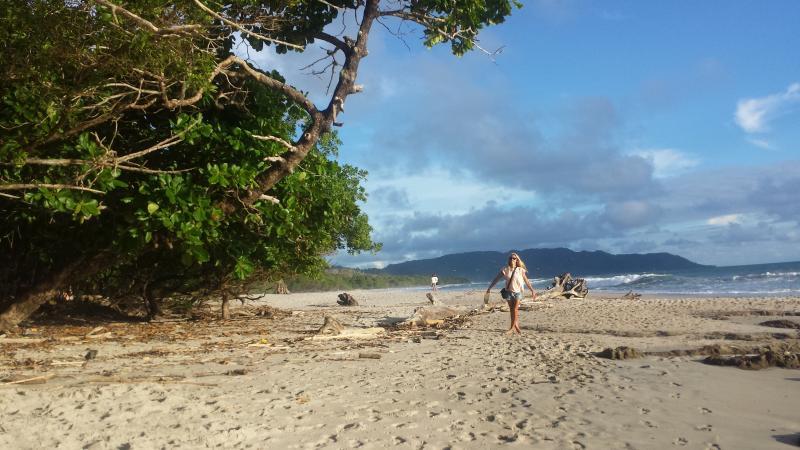 Beautiful beach directly out front Casa Mango