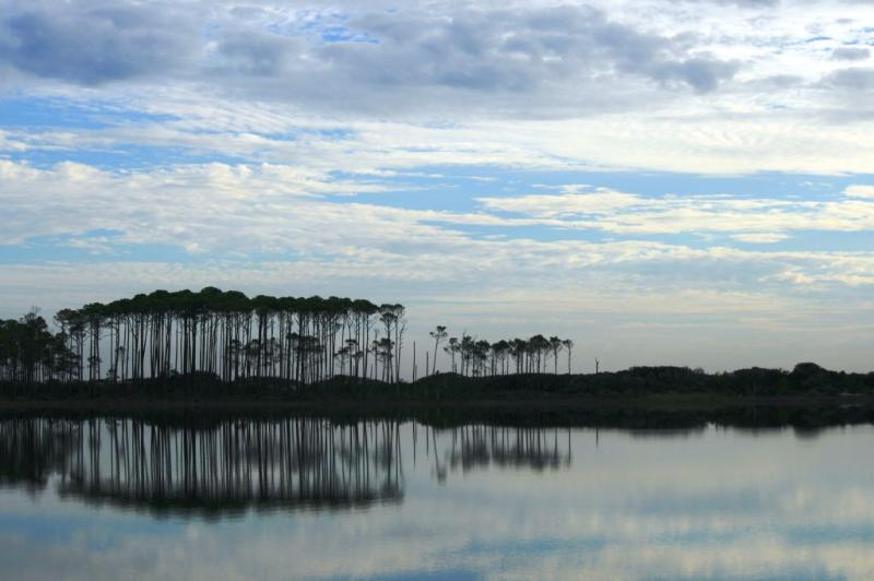 Grayton Beach State Park is Close By