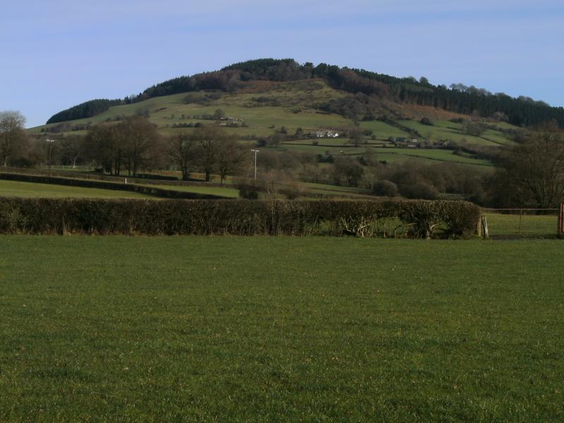 The Graig Hill from our farm