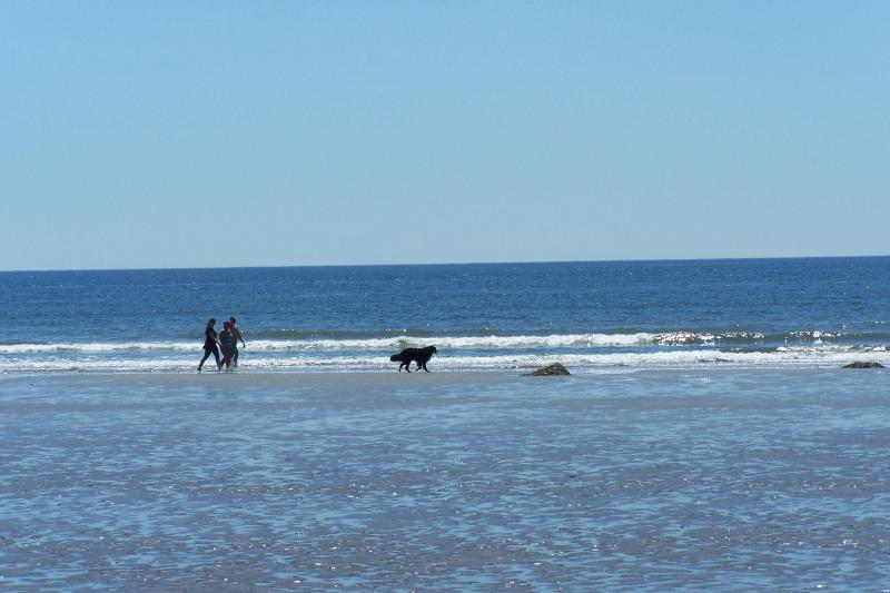 Mavilette beach