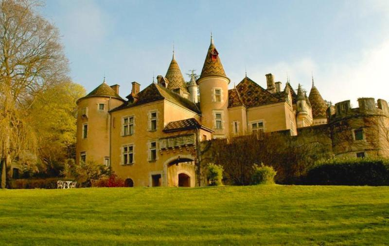 Chateau Gite, vacation rental in St Boil