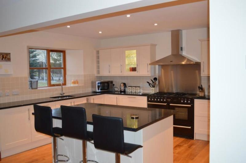 Large dinning kitchen looking towards kitchen end.