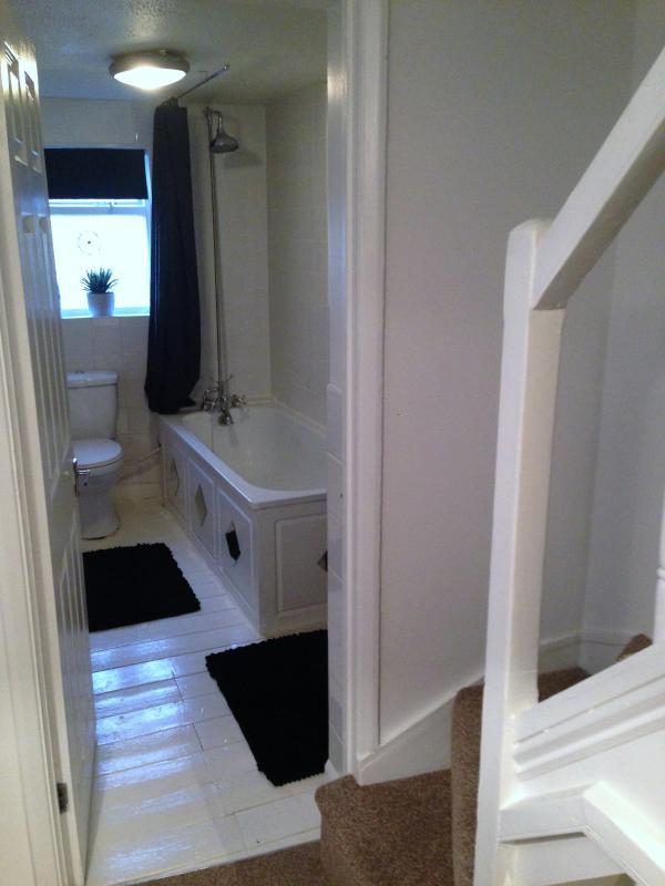 1st floor bathroom toilet