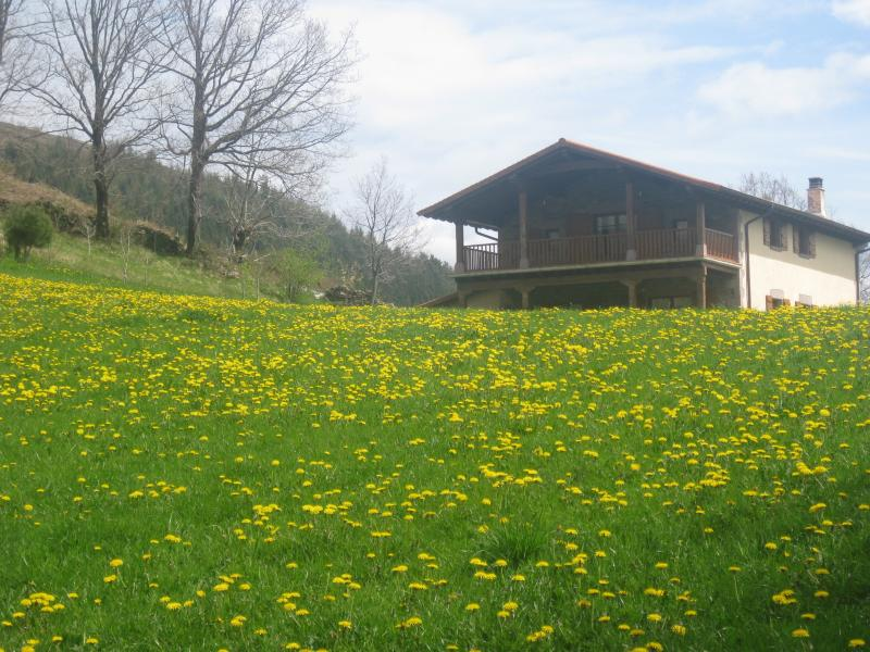 Estupenda casa Borda Martinea, location de vacances à Navarra