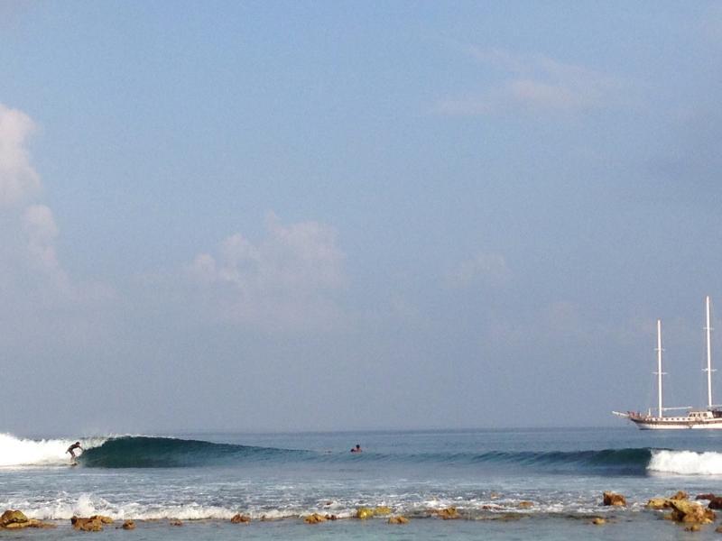 Coke Surf Spot