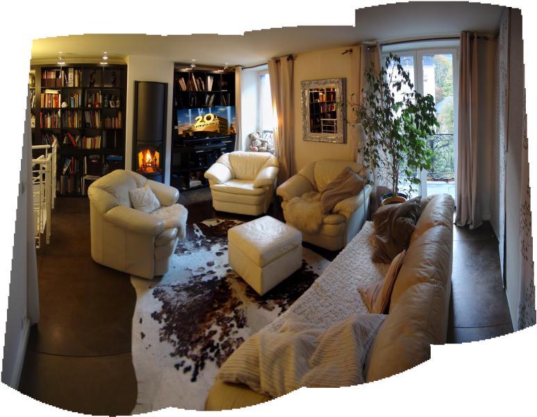 Salon n°2 - TV Fire place