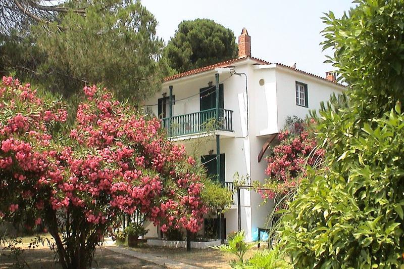 Strophilia Apartments | Koukounaries | Skiathos, location de vacances à Skiathos Town