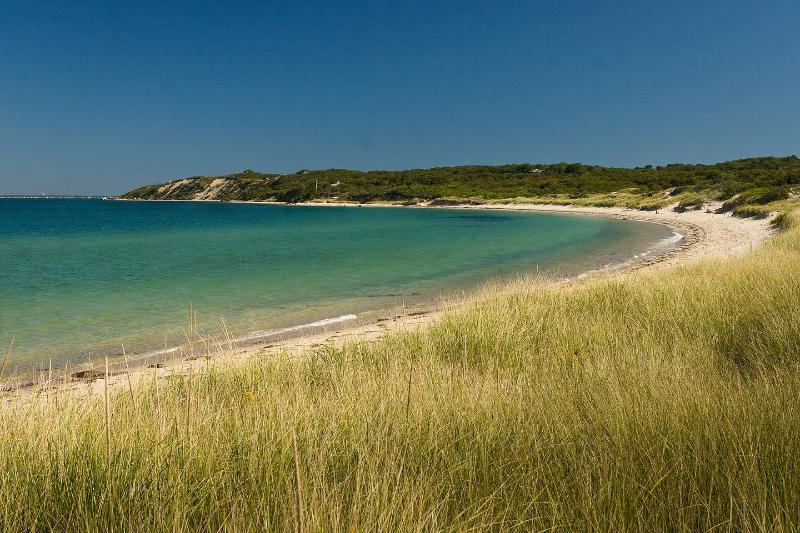 l'une des nombreuses belles plages de Martha Vineyard