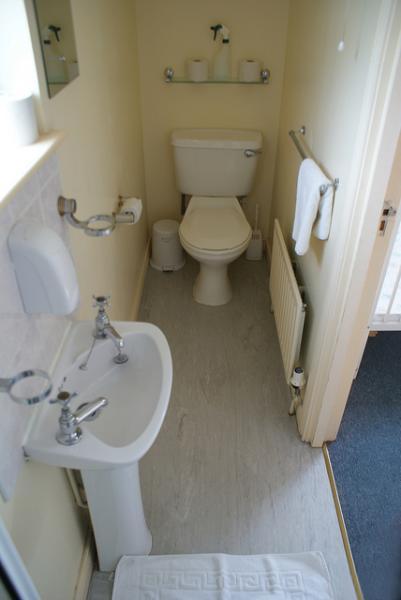 Aseo con ducha en suite del dormitorio principal en Bearnagh Cottage.
