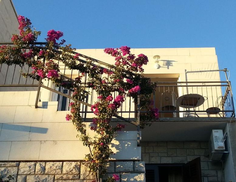 House with great bougenvillea