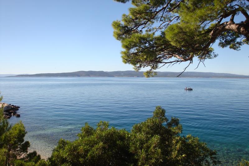 Sea & pines