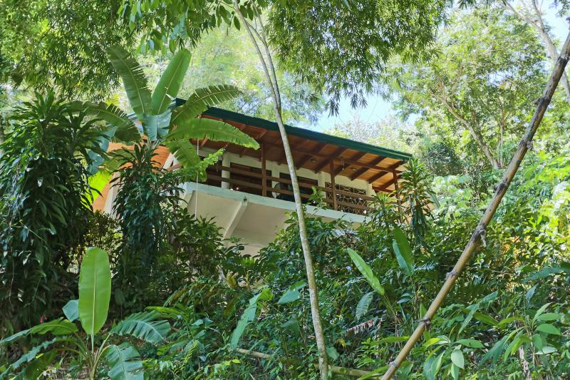 Wrap-around upper balcony overlooking giant bamboo, flowers and fruit trees.